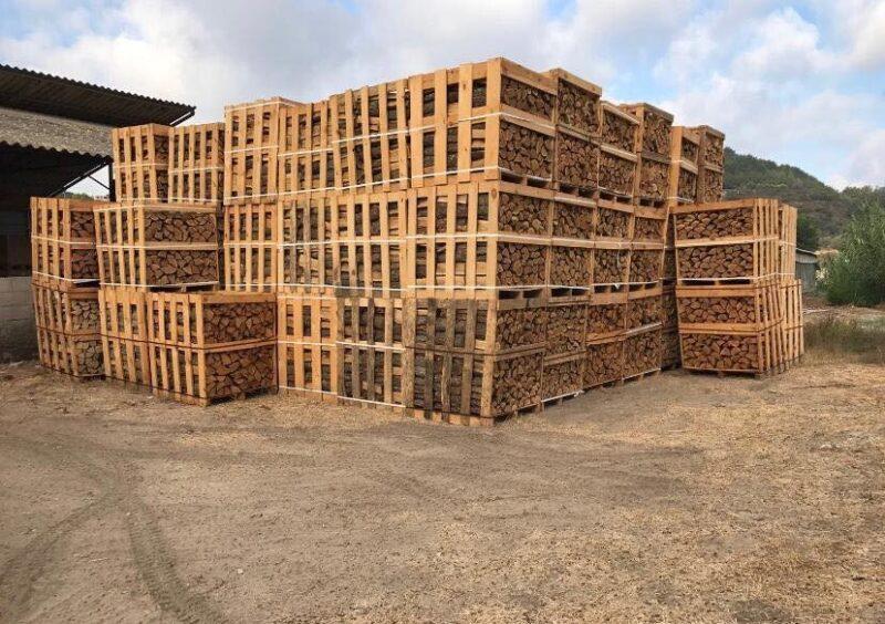 כפרניק 203260462_1493396921001758_1525938445048455698_n-scaled עץ אלון מבוקע ומסודר להסקה