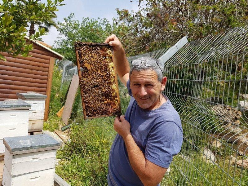 כפרניק 20180412_121803 קורס גידול דבורים בגינתיא