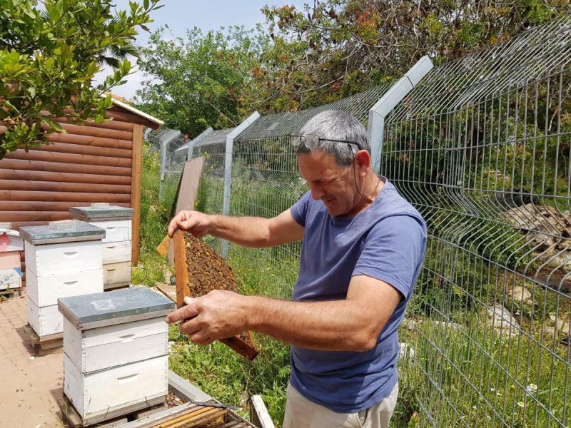 כפרניק 20180412_121847 קורס גידול דבורים בגינתיא