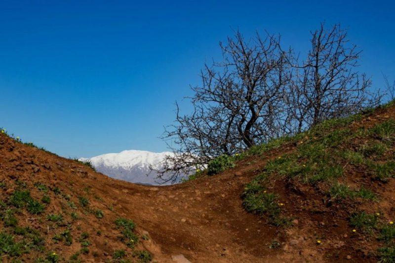 כפרניק 4453791-scaled רגעי טבע בגליל