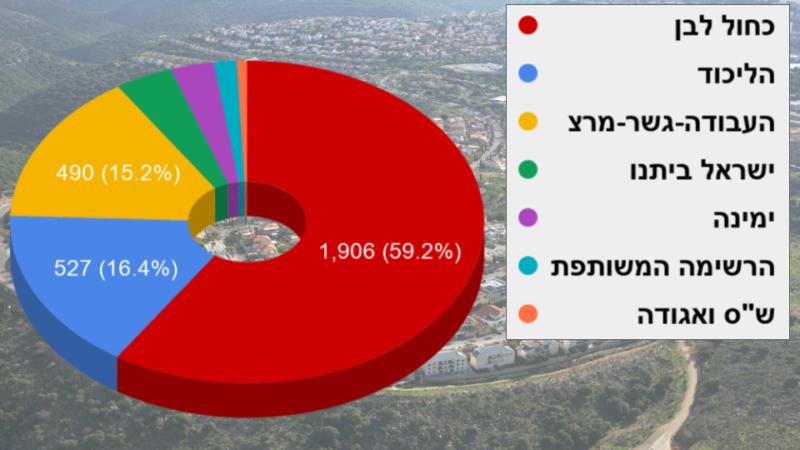 כפרניק 23444561 איך הצביעו בכפר ורדים?