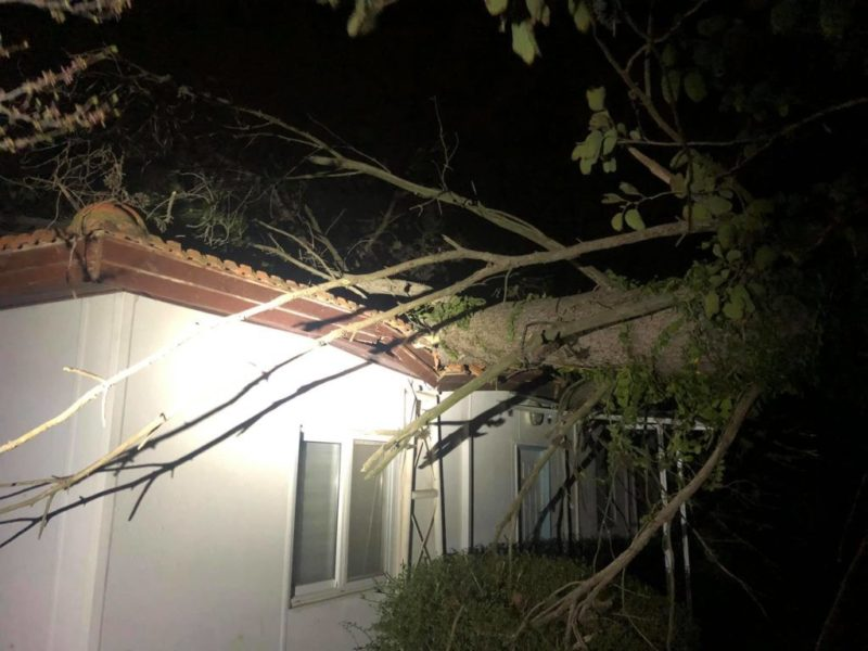 כפרניק 89872636_1947753532034994_6589541290281533440_o-scaled נזקי הסערה