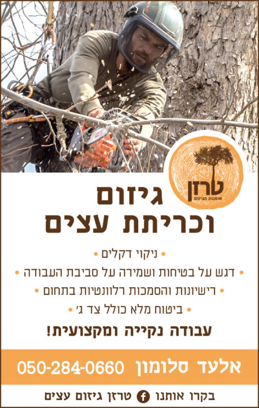 כפרניק tarzan302-scaled טרזן - אלעד סלומון גיזום וכריתת עצים
