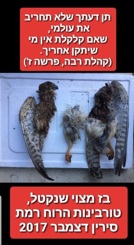 כפרניק WhatsApp-Image-2020-07-03-at-11.43.01-2-scaled מסוכן! לא אקולוגי ולא כלכלי