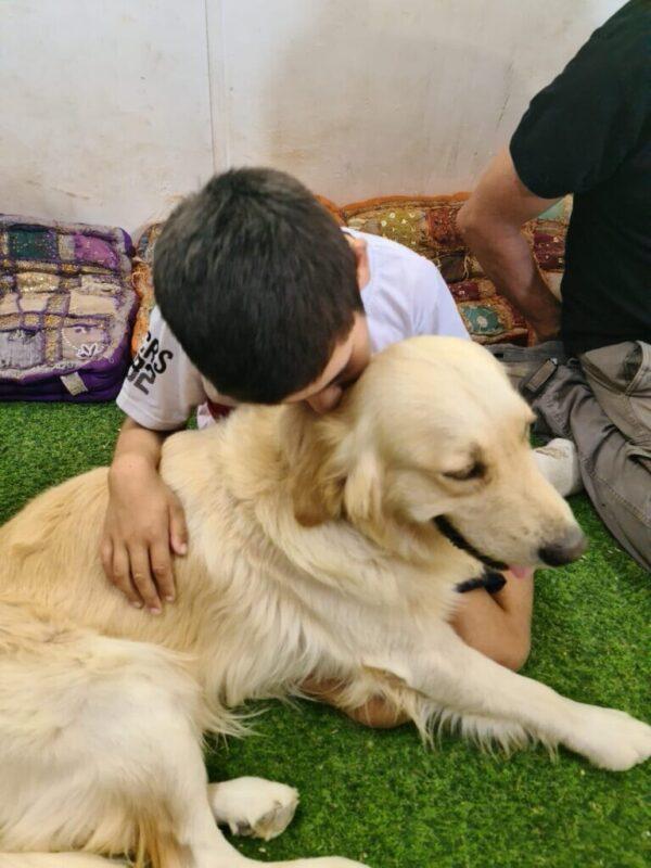 כפרניק WhatsApp-Image-2020-08-17-at-09.29.59-scaled כלב טיפולי לליעד