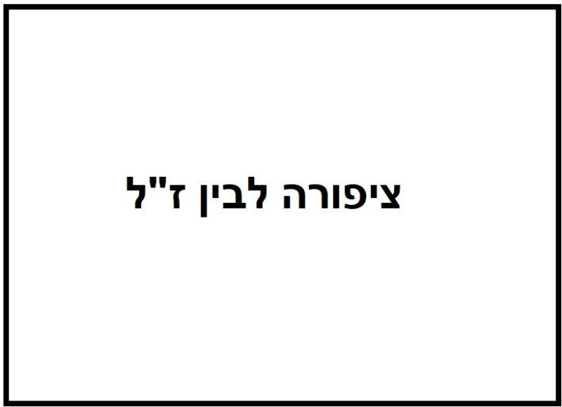 כפרניק 112904-scaled תנחומים למשפחת לבין
