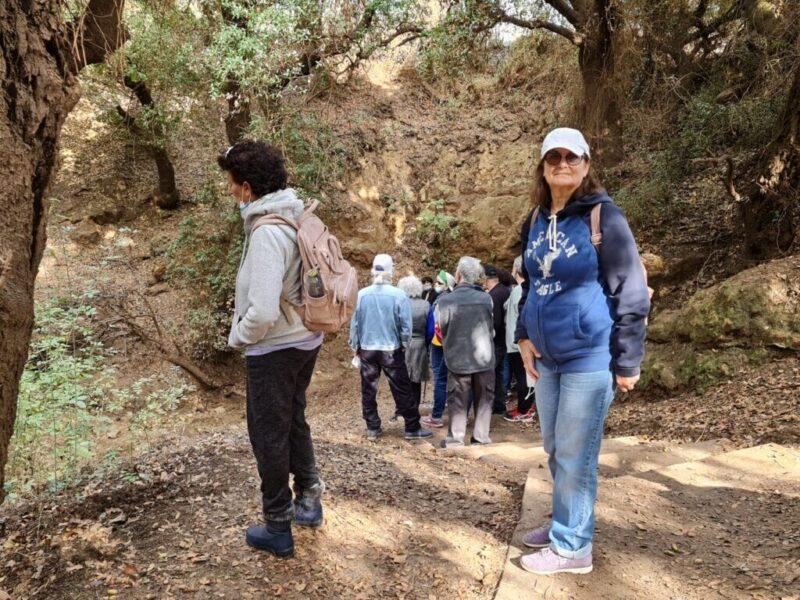 כפרניק WhatsApp-Image-2020-11-26-at-00.47.32-scaled להר מירון ומערת פער