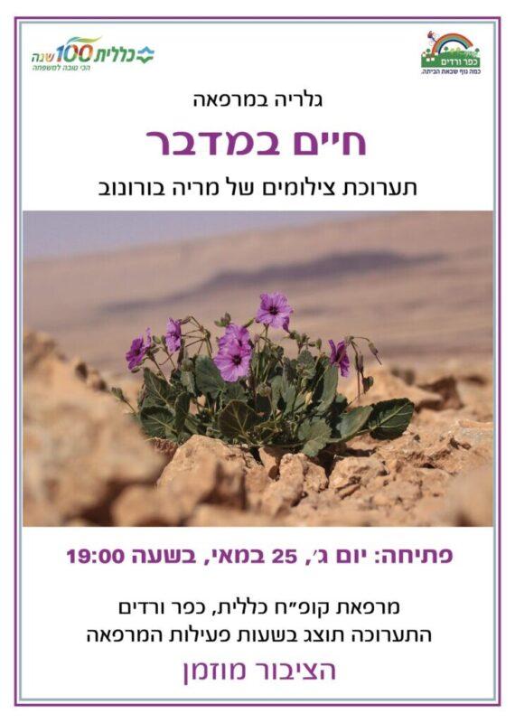 כפרניק 6657658-scaled חיים במדבר- תערוכה של מריה בורונוב