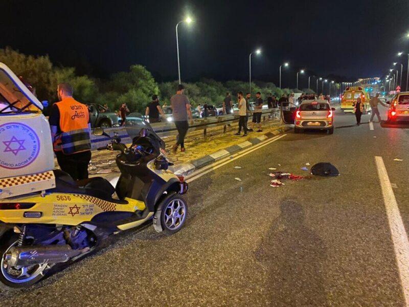 כפרניק WhatsApp-Image-2021-07-23-at-00.55.05-1-scaled הרוג על כביש 89
