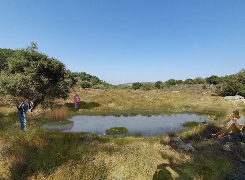 כפרניק WhatsApp-Image-2021-08-18-at-09.08.08-scaled פארק האגדות בכפר ורדים