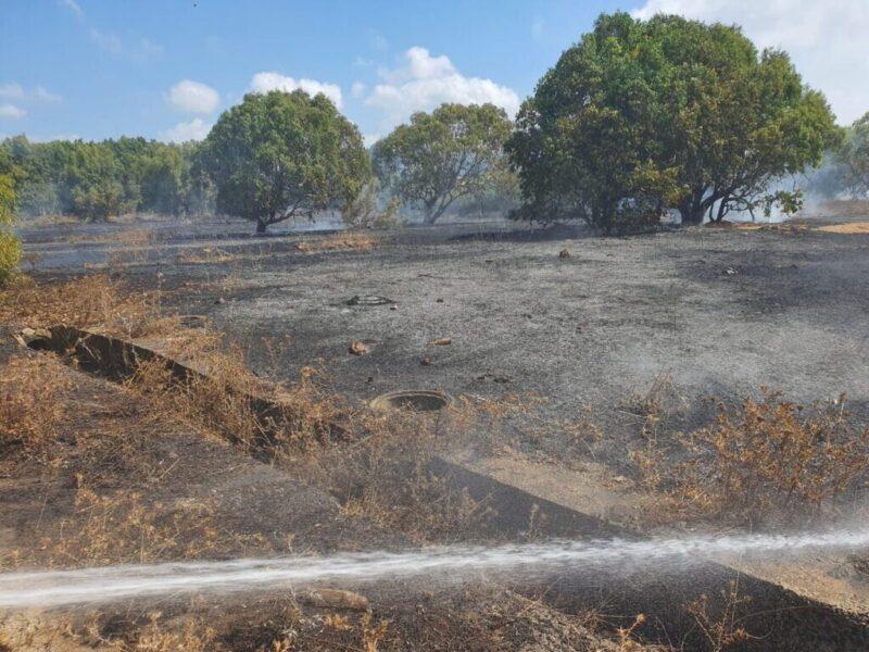 כפרניק WhatsApp-Image-2021-08-23-at-11.04.03-scaled שריפה בחצרות יסף