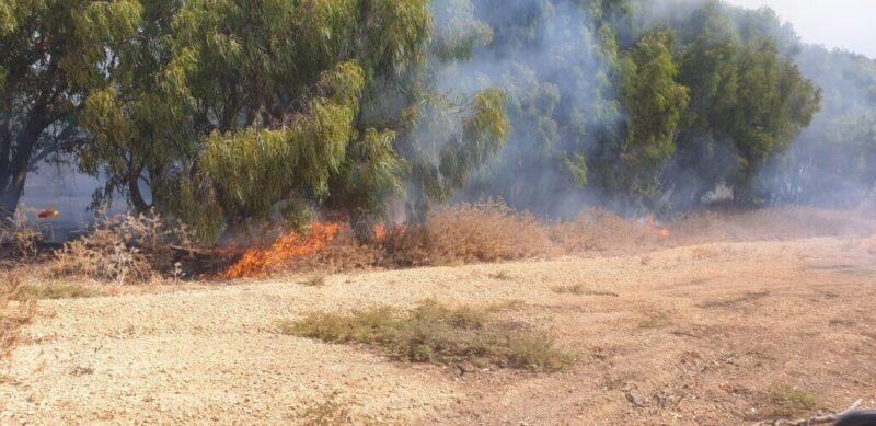 כפרניק WhatsApp-Image-2021-08-23-at-11.16.02-scaled שריפה בחצרות יסף