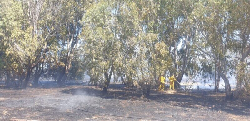 כפרניק WhatsApp-Image-2021-08-23-at-11.16.06-1-scaled שריפה בחצרות יסף