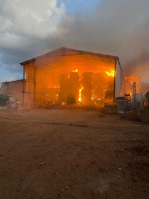 כפרניק WhatsApp-Image-2021-09-23-at-11.42.17-1-scaled עבדון: מתבנים עולים באש