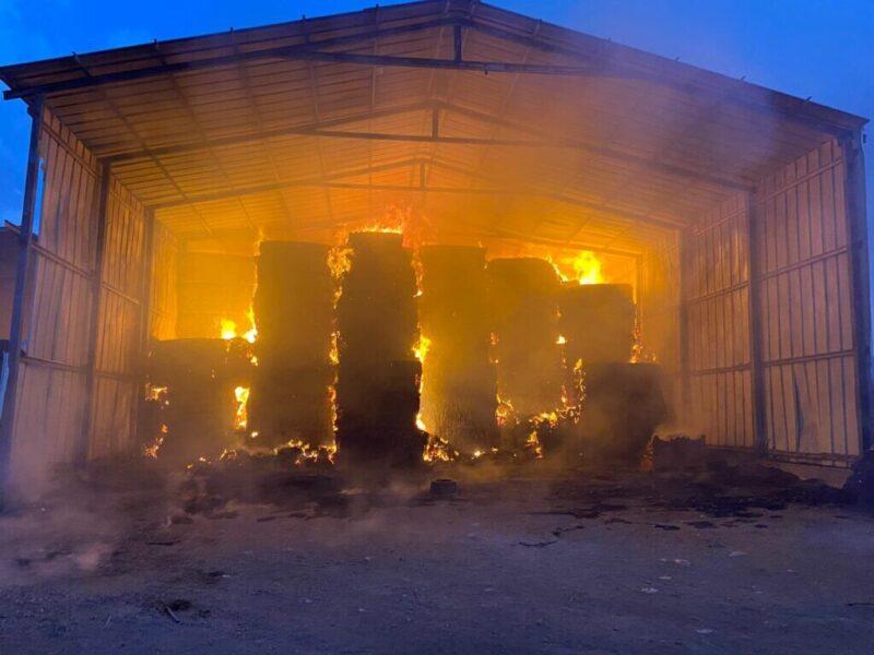 כפרניק WhatsApp-Image-2021-09-23-at-11.42.17-scaled עבדון: מתבנים עולים באש