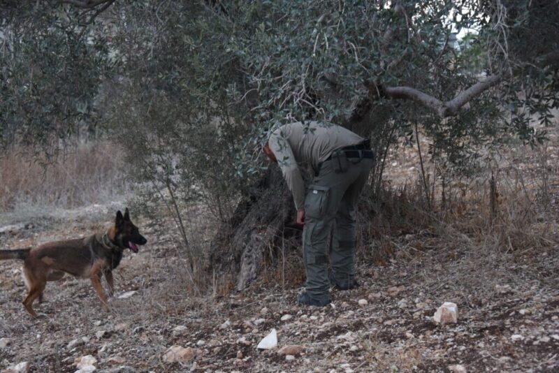 כפרניק mXj0-vDw-scaled 350 שוטרים פשטו על כפרים במגזר